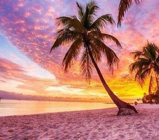 世界十大最浪漫的粉色沙滩,满满都是梦幻少女心