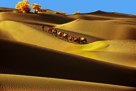 中国最大的沙漠 塔克拉玛干沙漠