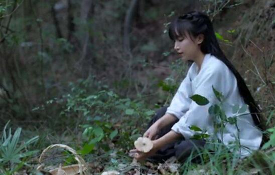 李子柒古风美食博主个人资料,身世令人心疼