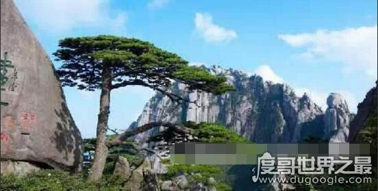 中国十大最贵景点,横店影视城门票就得1个月的生活费