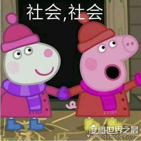 小猪佩奇社会人是什么意思,非主流文化很low的意思