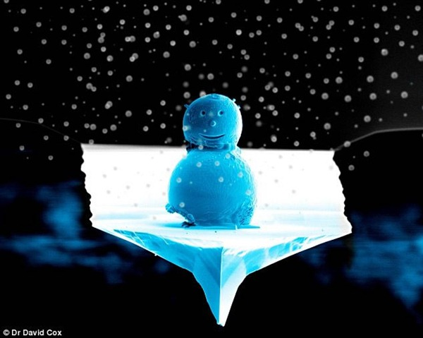 世界最小的雪人