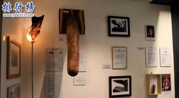 世界上最长的阴茎:战斗状态下60厘米,东北吴先生为国争光