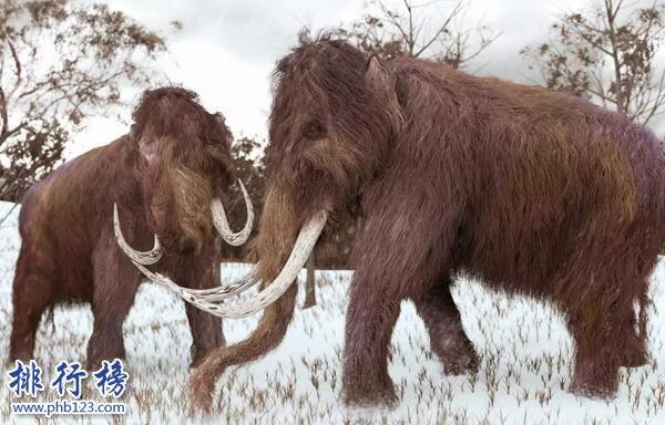 世界十大已经灭绝的动物 已灭绝的动物名录大全(图片)