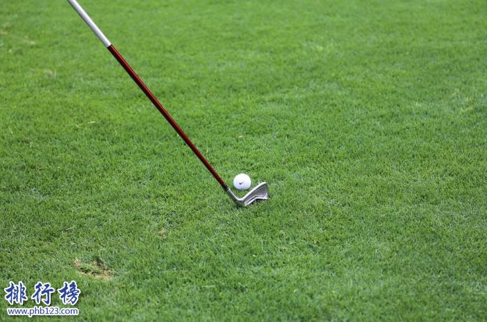高尔夫球杆哪个牌子好 2018高尔夫球杆品牌排行榜