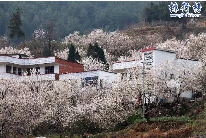 湖北十大名村:湖北各市最富裕的村