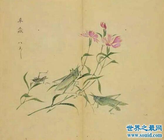 我国第一部诗歌总集是什么,孔子编辑的诗经(311篇)